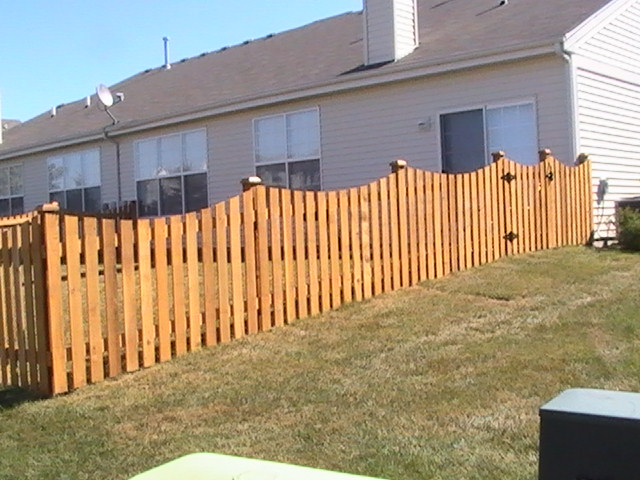 Picket Scallop Fence